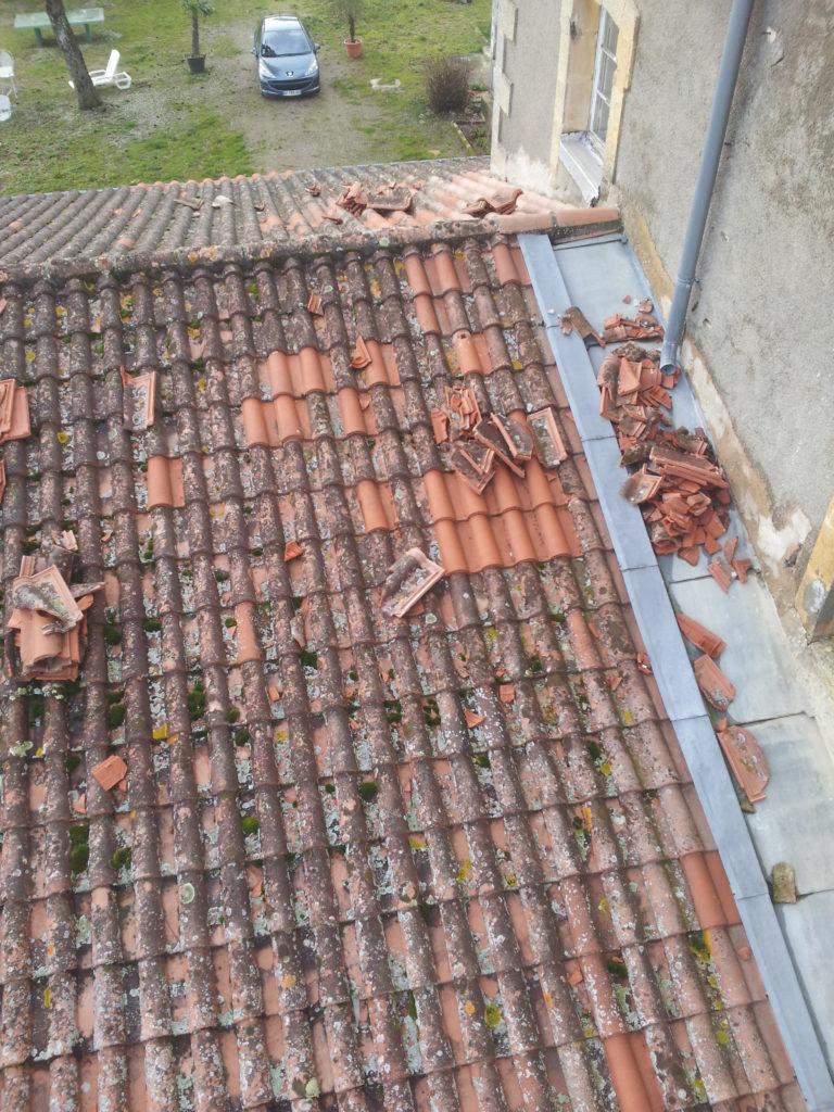 bâtiment et des travaux publics immobilière second-oeuvre corps d'état termites